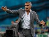 Turkey manager Senol Gunes on June 16, 2021