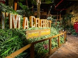 I'm A Celebrity: The Attraction