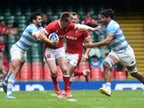 Result: Argentina claim win over Wales to take Test series