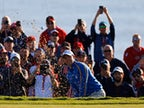 Padraig Harrington defends decision to leave Rory McIlroy out of foursomes